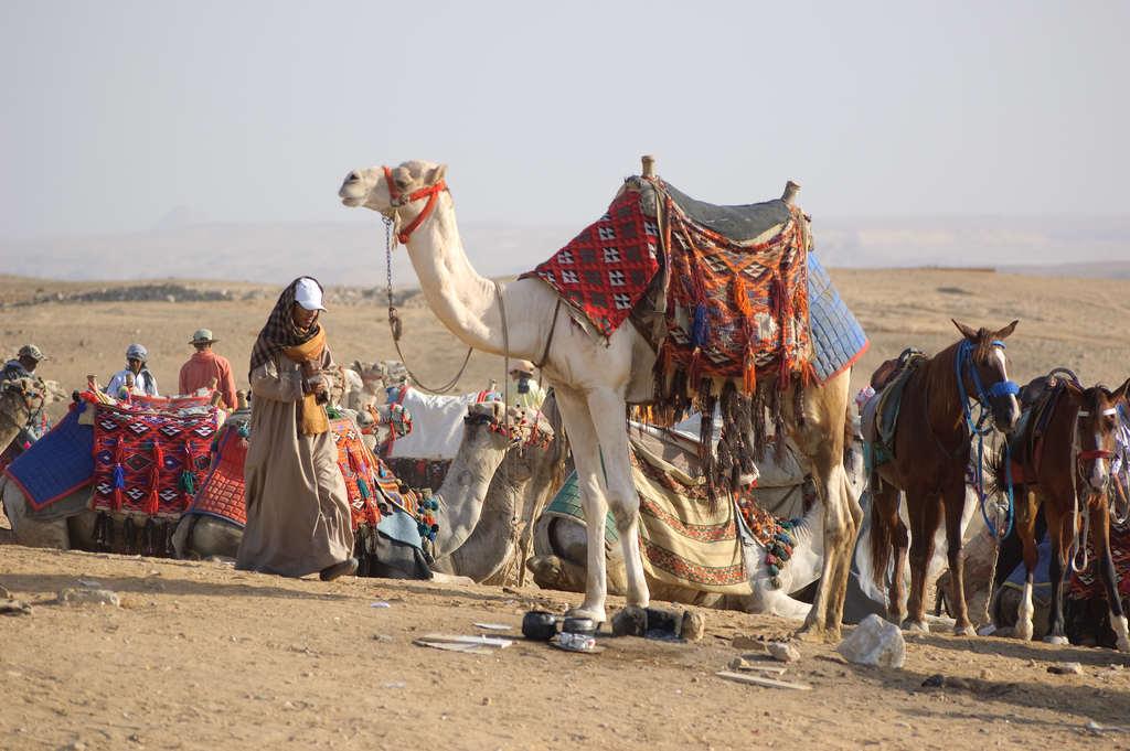 beduini-w-egipcie-ludzie-pustyni-wyrusz-w-zyciowa-podroz-soul-travel