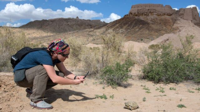 zolwie-w-uzbekistanie-turystka-fotografuje-zolwia-wyrusz-w-zyciowa-podroz-soul-travel